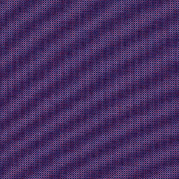 BEN 10161 BENGALI PURPLE